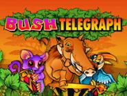 Игровой аппарат Телеграф Под Кустом