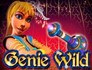 Играть бесплатно в автомат Genie Wild